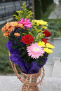 Red Gerbera flowers. Beautiful bouquet of colorful spring flower in a basket.