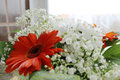 Red gerbera gerbera and white chrysanthemums chrysanthemum in a bouquet of flowers Stock Photo
