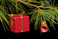 Red gift box and bauble on pine branch Stock Image