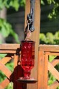 A red glass square humming bird feeder Royalty Free Stock Photo