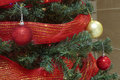 Red and gold christmas baubles with ribbon in a tree Royalty Free Stock Photo