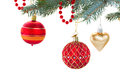 Red and gold christmas decorations   on fir tree Royalty Free Stock Photo