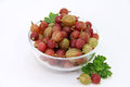 Red gooseberries Royalty Free Stock Photo