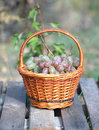 Red grape in brown wicker basket on wooden table closeup