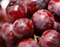 Red Grape Macro Royalty Free Stock Photos
