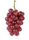 Red grape  on the white background Royalty Free Stock Photo