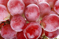 Red grapes close-up Royalty Free Stock Photo