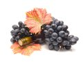 Red grapes with leaves and Wine bottle Royalty Free Stock Photo