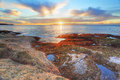 Red and green algae covered rocks at sunrise  Coogee, Sydney Aus Royalty Free Stock Photo