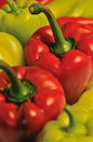 Red and green bell peppers Royalty Free Stock Images