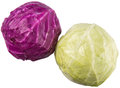 Red And Green Cabbage IV Royalty Free Stock Photo