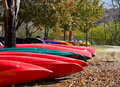 Red and Green Canoes Stock Photography