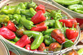 Red and green chili in bushel baskets for sale picked at harvest wooden Royalty Free Stock Photos
