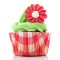 Red and green cupcake Stock Image
