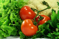 Red on green: fresh assorted vegetables Stock Photo