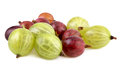 Red green gooseberries Royalty Free Stock Photo