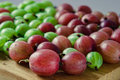 Red and green gooseberries Royalty Free Stock Photo