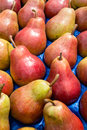 Red green pears display Stock Photography