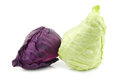 A red and a green pointed cabbage on white background Royalty Free Stock Image