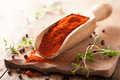 Red ground paprika spice in wooden scoop Stock Image