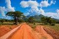 Red Ground Road, Bush With Sav...