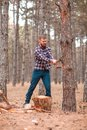 A lumberman with a beard,chop wood in the forest. Outdoors. Royalty Free Stock Photo
