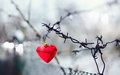 Red heart and barbed wire love symbol symbol of love metal Stock Photo