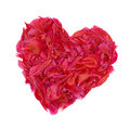 Red heart built of peony petals. Stock Images