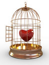 Red heart in cage Stock Image