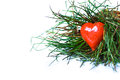 Red heart in grass a wicker basket with green Stock Image