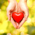 Red heart in human hands on green leaves background Royalty Free Stock Images