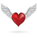 Red heart with wing love symbol Stock Photos