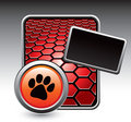 Red hexagon advertisement with paw print Stock Photos