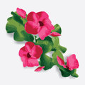 Red hibiscus and green leafs on gray Royalty Free Stock Image