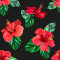 Red hibiscus tropical flowers seamless pattern Royalty Free Stock Photo