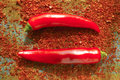 Red hot chili Cayenne pepper fresh and dried powdered spice, rea Royalty Free Stock Photo