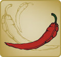 Red hot chilli pepper vector illustration Royalty Free Stock Photography