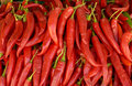 Red hot chilli peppers Royalty Free Stock Photos