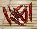 Red Hot Chilly Stock Images