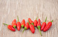 Red hot chilly peppers in a row great and colorful on wood Stock Image