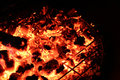 Red Hot Coals in a Campfire Royalty Free Stock Photo