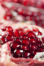 Red juicy pomegranate background, super macro Stock Photography