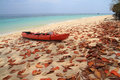 Red kayak and leaves on the beach of thailand Stock Photo