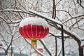 A red lantern chinese in the snow Stock Image