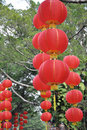 The red lanterns Royalty Free Stock Photos