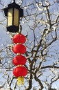 Red lanterns on tree hanging the china Stock Image