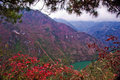 The red leaf in The Three Gorges at Yangtze river Stock Photos