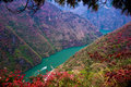 The red leaf in The Three Gorges at Yangtze river Royalty Free Stock Photos
