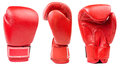Red leather boxing glove isolated Royalty Free Stock Photo