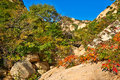 The red leaves on the hillside of zu mountain photo taken in china s hebei province qinhuangdao city scenic spot gallery valley Royalty Free Stock Photos